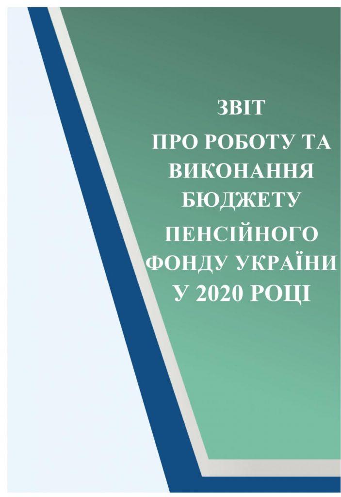 Zvit pro robotu ta vykonannya byudzhetu PFU 2020 page 0001 703x1024